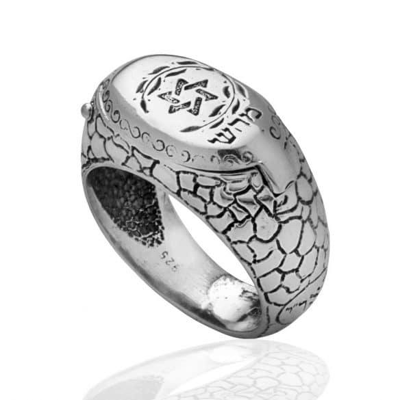Silver Star of David Snake Ring