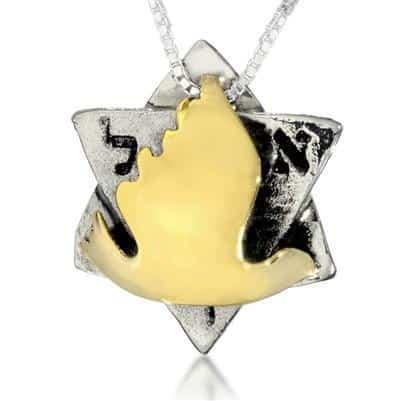 The Dove Magen David Pendant Kabbalah Necklace